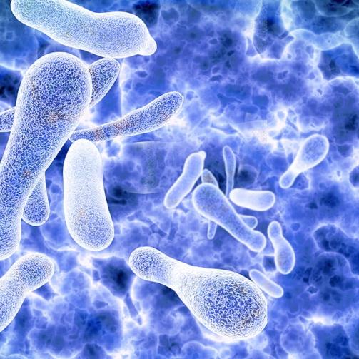 Sicurezza ambiente e Legionellosi - Tecnologie & Sistemi